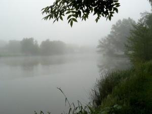 29 mai 08h37-Decize-Camping des Halles-La Vieille Loire sous la brume