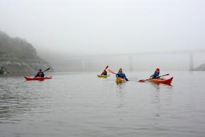 Lac de Villerest (30 nov 2014) sous la brume