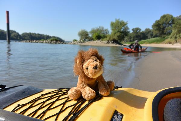 Cékalomi fait une pause sur une plage à Beaucaire