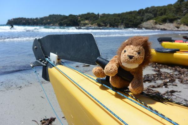 Cékalomi a peur des rouleaux dans la Baie du Niel (Presqu'Île de Giens) !