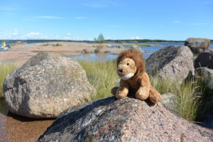 Cékalomi fait bronzette sur Pålskär