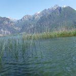 Lac de Mezzola