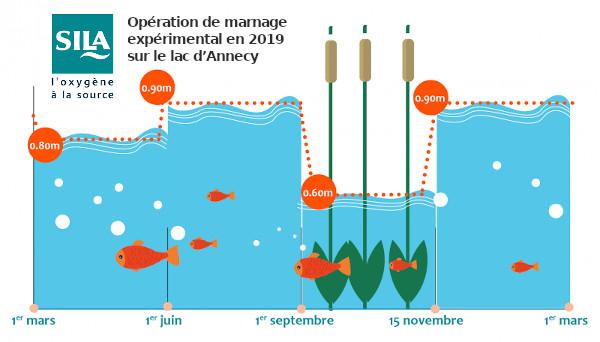 Marnage sur le Lac d'Annecy